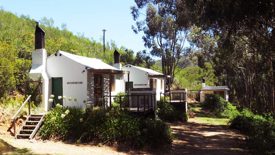 de hoop farm accommodation 8 2