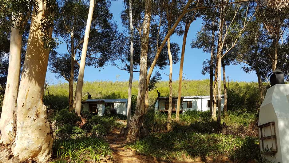 de hoop farm accommodation 9